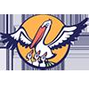 Северо-Осетинский республиканский институт повышения квалификации работников образования